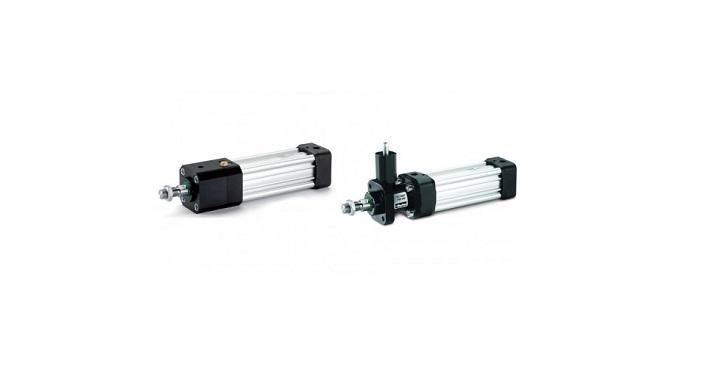 Rod Lock Cylinders - P1D-L / P1D-H